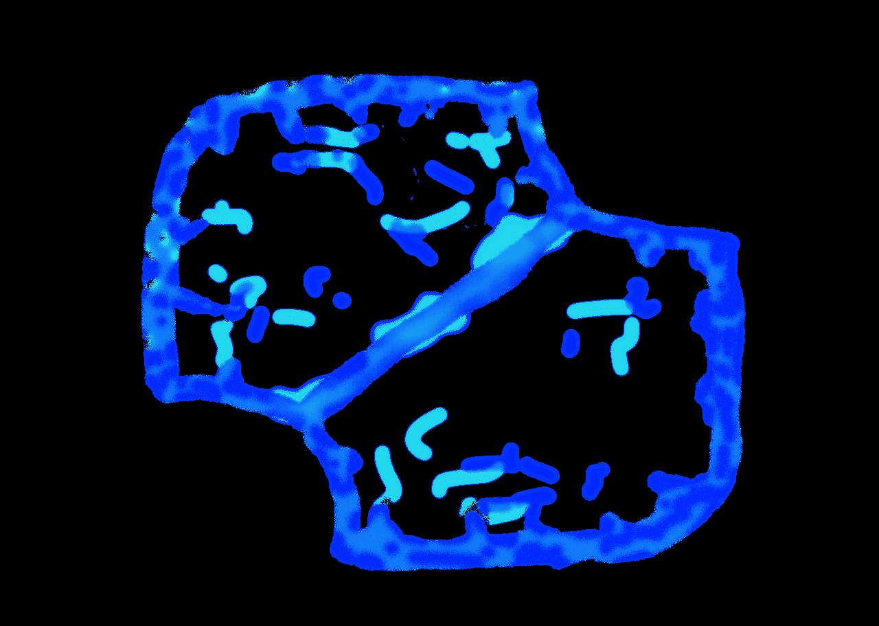 map lanes mask