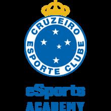 Cruzeiro Academy