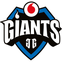 Vodafone Giants