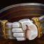 giants-belt